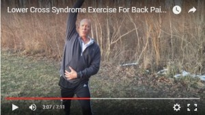 lower cross syndrome exercise