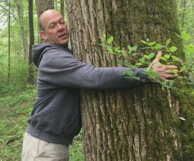 Abdominal Hollowing vs Abdominal Bracing Lesson from trees