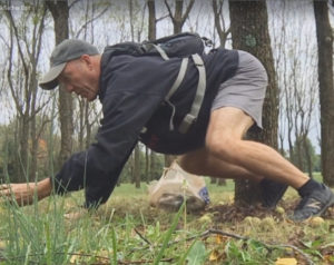 Gathering Walnuts With Bear Crawl Exercise